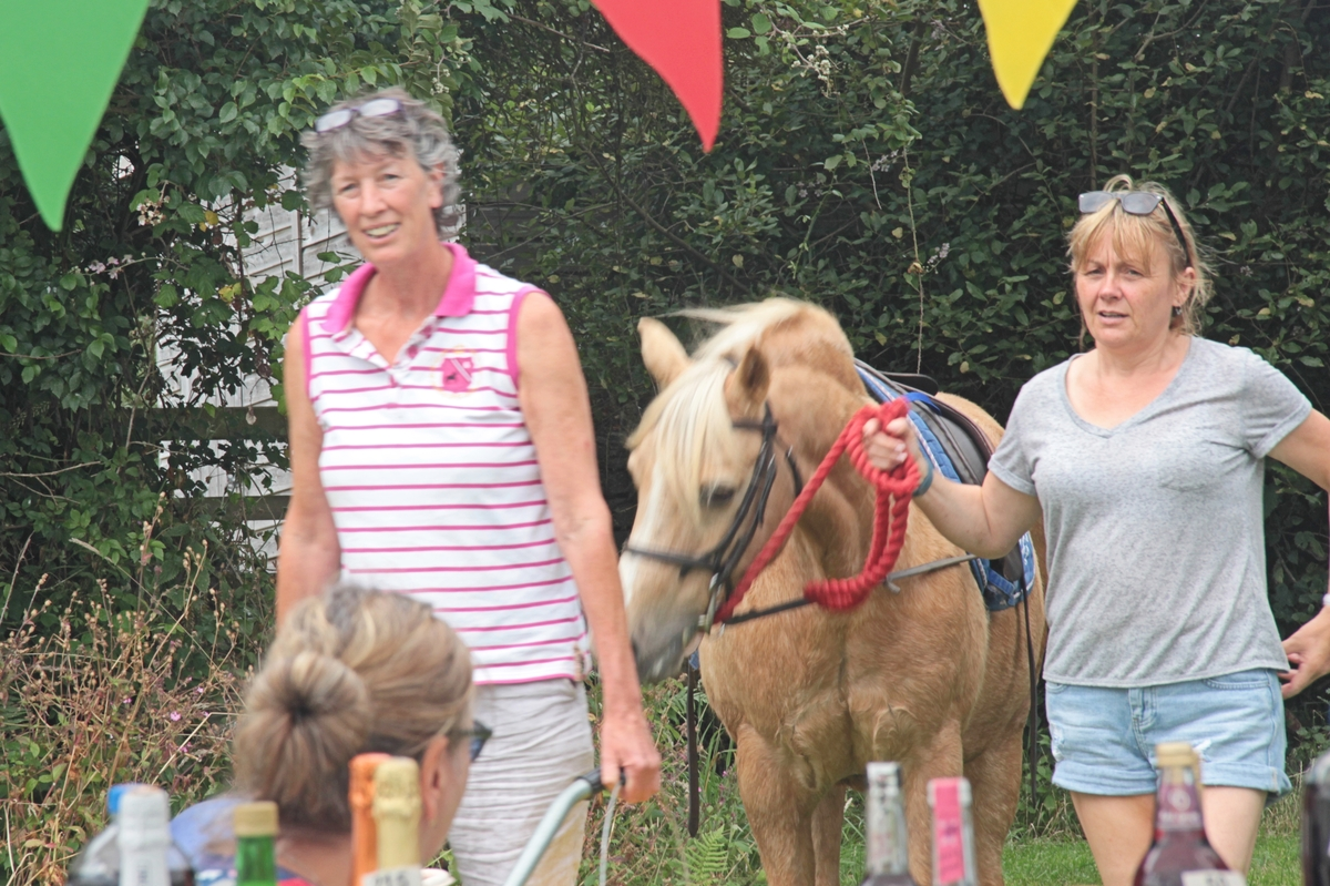 11-2016-fete-pony-rides